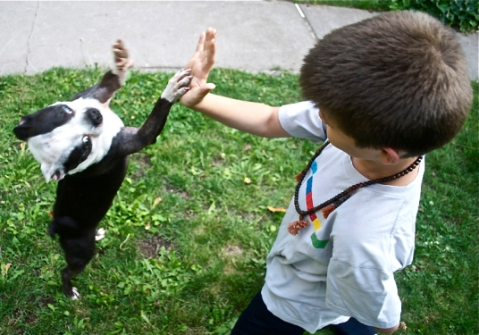 'Niko and Spanky' - photographs by Willodel http://www.facebook.com/Willodel