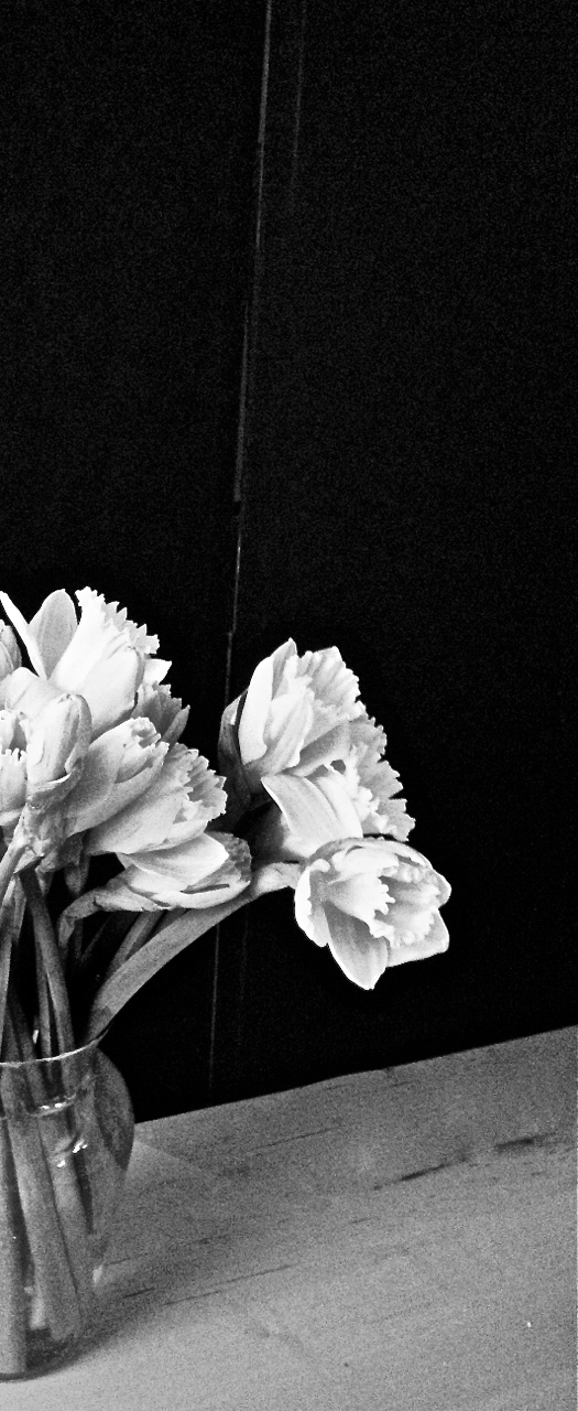 bouquet black backdrop