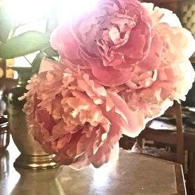 (+++) 'Let a hundred flowers bloom' sm strike 4-5 july 2019 postgutenberg@gmail.com